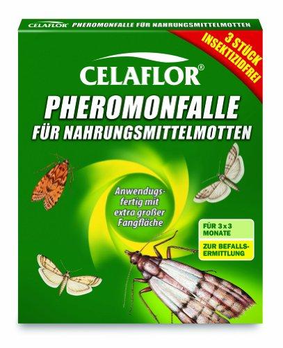 Celaflor Pheromonfalle für Nahrungsmittelmotten, Mottenfalle für Lebensmittelmotten, 3 Stück