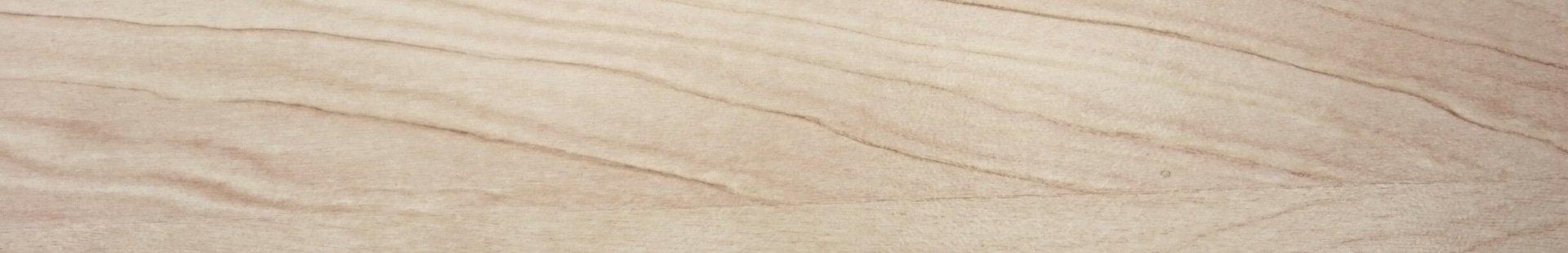 Pflege von Holz: Birke